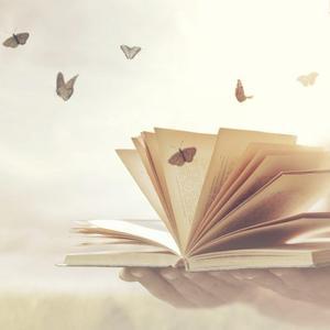Medialität und Intuition lernen und leben